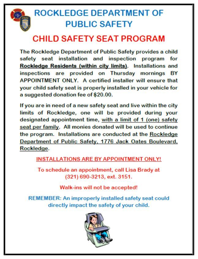 Car Seat Flyer NEW